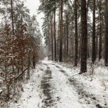 2021_01_03 Winterwanderung Hohenbocka