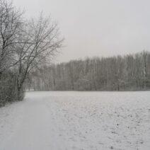 2021_01_10 Wintergrüße aus Leipzig_2 - von Sophie Lathan