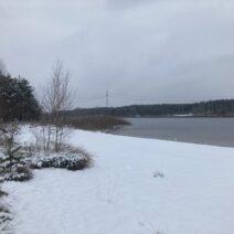 2021_01_16 Hohenbocka - am Restloch Heide-1