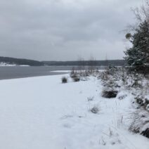 2021_01_16 Hohenbocka - am Restloch Heide-4