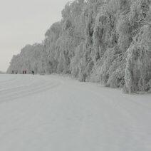 2021_01_19 Langlauf im Ergebirge - von Dieter Gahut